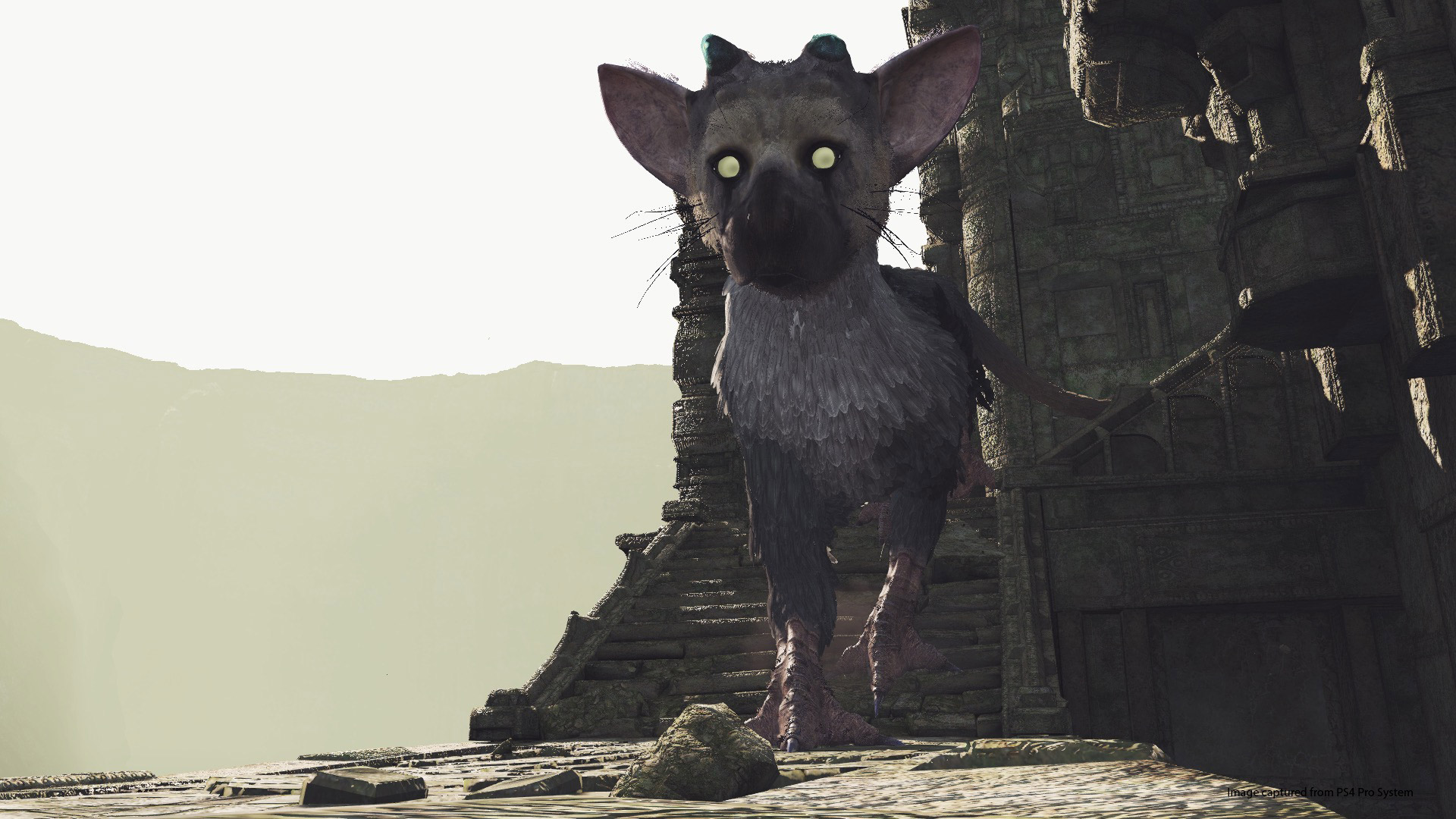 The Last Guardian Is Getting A Free Standalone Psvr Experience